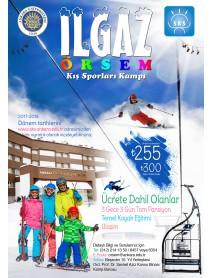 1000 Adet 35X50 Renkli Afiş